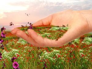 Мир для тебя